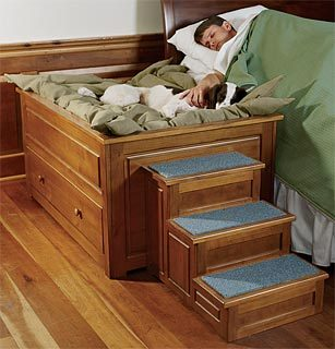 build dog bed